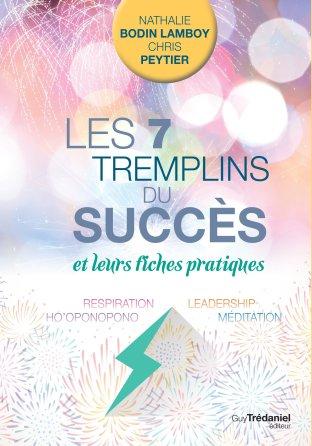 les-7-tremplins-du-succes